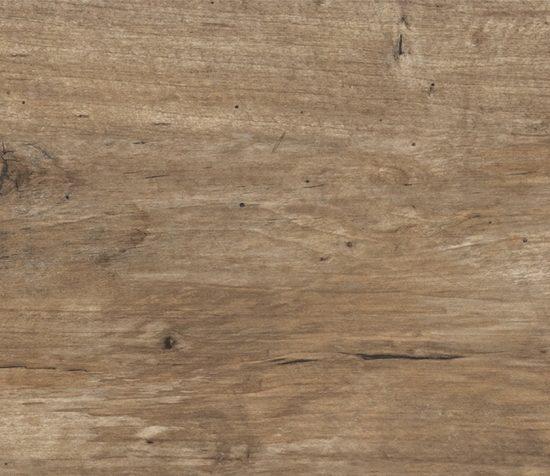 Colectia Timber